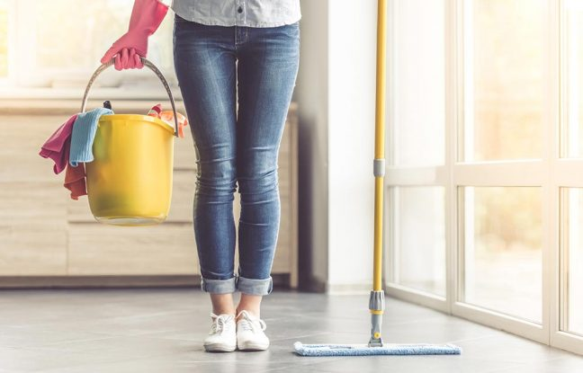 House Cleaning   BigDog Support Services