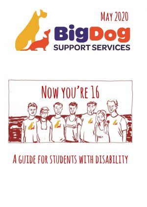 Now You're 16 | BigDog Support Services