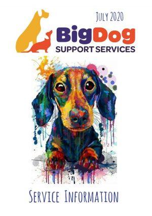 BigDog Service Information July 2020 | BigDog Support Services